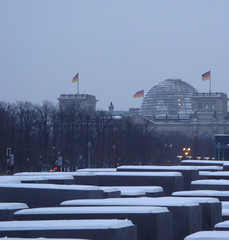 January 16: Berlin Holocaust Memorial and the Reichstag