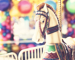After all, spinning is its own reward. (Simutis [nancy]) Tags: bokeh carouselhorse newmexicostatefair florabella d700