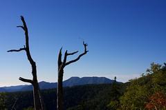 自然のオブジェとウペペサンケ