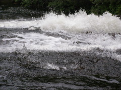 Parc national de la Mauricie, QC (MT-FOTOS) Tags: lake canada nature river see nationalpark quebec natur lakes qubec fluss seen mauricie laurentians lamauricie kanada troisrivires flsse nationalparkofcanada parcnational parcnationaldelamauricie