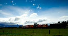 Kiwi Railway