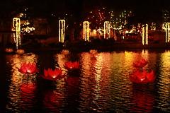 Vesak2010 418 (mikals) Tags: lights srilanka colombo 2010 vesak beira wesak vesak2010