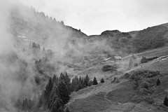 Hut (sharpneil) Tags: trees blackandwhite bw mist france mountains alps neil sharp chalet morzine sharpographycouk