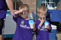 "St. Louis Snow Cone at the Alzheimer's Association Memory Walk • <a style=""font-size:0.8em;"" href=""http://www.flickr.com/photos/85572005@N00/5001468857/"" target=""_blank"">View on Flickr</a>"