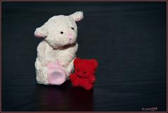 now listen here shorty (Singing With Light) Tags: bear red white home sheep pentax small tiny kiwi dailyshoot k200d bahbahra ds307 fridgemagnetbahbahradailyshootk200dbearhomemadeds307kiwipentaxredsheepsmalltinywhite
