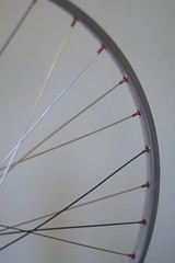 Spoke & nipple detail (Matthew Byrne) Tags: bike wheel hub vintage cycling nipples spokes cleaning cycle record restoration rim truingstand degreasing campagnola truing wheeltruing