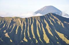 DSC_0724 (_Codename_) Tags: indonesia volcano java 2010 mountsemeru bromotenggersemerunationalpark mtsemeru mtbatok mountbatok mtpananjakan mountpananjakan