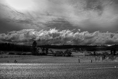Cloud Scapes (Jasondrye) Tags: blackandwhite cloud field clouds spokane farm fields farms hdr tonemapped