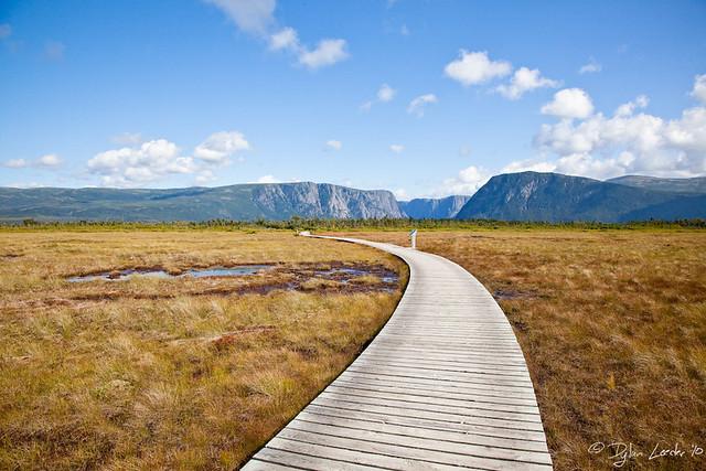 Newfoundland - Gros Morne