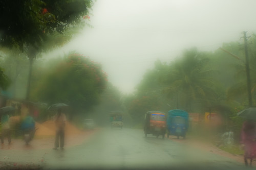 Monsoon, Karnataka - Chitra Aiyer Photography