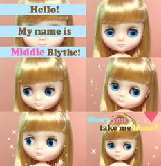 New Middie Blythe animation