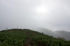 円山からは雲の中