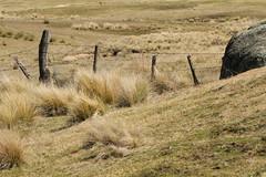 Australian landscape (kasia-aus) Tags: nature grass rock fence dry australia canberra act 2010 orroralvalley