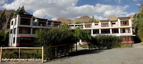 ladakh hotels shey