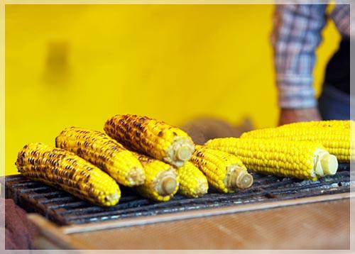 玉米,烤玉米,糯玉米,甜玉米,白玉米,黃玉米,紫玉米,老玉米,玉蜀黍,包穀,苞米,棒子番麥,燒番麥,玉米鬚,玉米鬚茶,玉米筍,玉米營養,玉米功效,玉米油,玉米粉,玉米熱量,水煮玉米,精油按摩,精油按摩舒壓,馨舞極,馨舞極spa,健康養生