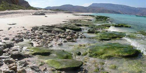 Beachrock - Ras Shuab (Soqotra, Yemen) - 01