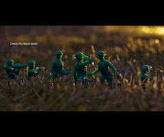 Complete Your Mission Soldier! (Kevin Longwill) Tags: garden toy soldier sigma30mmf14