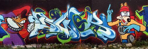 swok lsd 2010 coevorden