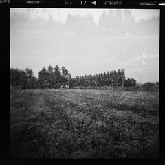 (...storrao...) Tags: trees blackandwhite bw tractor 6x6 film portugal field mediumformat holga exposure fuji doubleexposure straw pb double porto campo maia neopan analogue filme palha pretoebranco árvores 120mm analógico holgagraphy selfdeveloped onfilm fujineopan ilfordilfotechc film:iso=400 selfscanned film:brand=fuji neopan400pro storrao sofiatorrão developer:brand=ilford film:name=fujineopan400 developer:name=ilfordilfotechc filmdev:recipe=6034