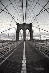 Brooklyn Bridge Fisheye (YannGar Photo) Tags: usa ny newyork america us nikon states nuevayork amerique d5000 mygearandme yanngar