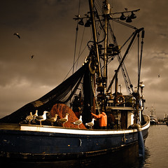 untitled . 4192 (Steven Schnoor) Tags: color dark washington westport schnoor commercialfishing