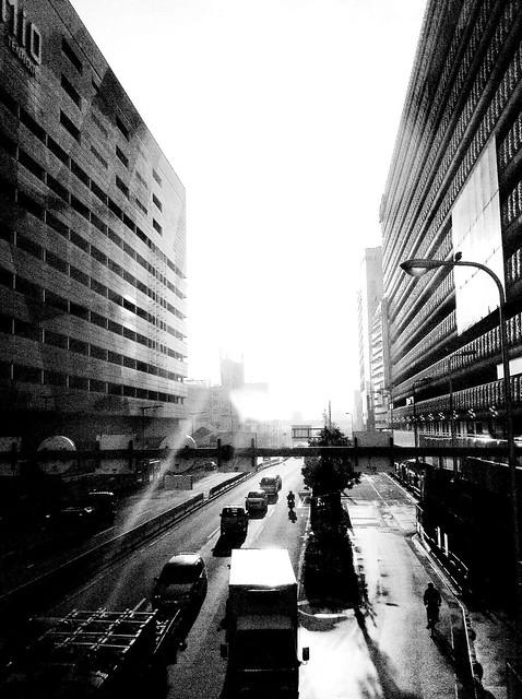 今日の写真 No.30 –朝日の中で/iPhone4 + Spica
