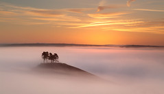 breathe (Tony Gill) Tags: trees mist beauty fog sunrise landscape dawn hill calm dorset breathe bridport leefilters colmershill