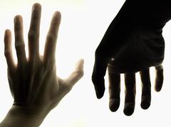 手の表と裏