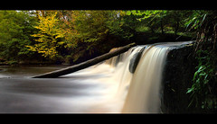 fall (Spencer Bowman) Tags: longexposure autumn shadow colour fall nature water contrast flow scotland waterfall natural availablelight vivid panoramic sheen za silky lanarkshire calderglencountrypark nohorizon nd110 cz1680 sonya450 variosonnartdt35451680