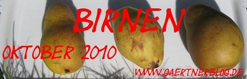 Garten-Koch-Event Oktober 2010: Birnen