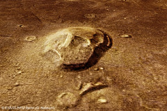 Naturally 'skull-shaped' formation in Mars Cydonia region (europeanspaceagency) Tags: mars european space agency esa europeanspaceagency marsexpress missionmars marsmission cydoniaregion skullshapedformation