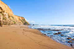 California sunny beach (kmanohar) Tags: pointreyes ptreyes pointreyesnationalseashore ptreyesnationalseashore pointreyesnationalpark nationalparkservice nps usnationalparks californianationalparks departmentofinterior westernnationalparks westcoastnationalparks californiacoastalpark californiapark federalland federalproperty marincounty marincoast marincountypark marincountynationalpark marincountynationalseashore marinseashore marinpacificcoast pacificcoast californiacoast marincountycalifornia marincalifornia northerncaliforniacoast marincaliforniacoast pointreyespeninsula pointreyescoast pointreyesseashore salinianblock batholith californiabatholith northerncaliforniabatholith terrane californiaterrane northerncaliforniaterrane sculpturedbeach remotebeach secludedbeach lonelybeach californiabeach westcoastbeach pacificbeach sunnybeach californiasunnybeach californiahiking hiking pointreyeshiking westcoasthiking westernhiking hikingtrails californiatrails californiahikingtrails hikingdestinations bayareahiking bayareahikingtrails sanfranciscobayareahiking sanfranciscobayareatrails marincountyhiking marincountytrails sfbayareahiking sfbayareatrails northerncaliforniahiking northerncaliforniatrails norcaltrails norcalhiking