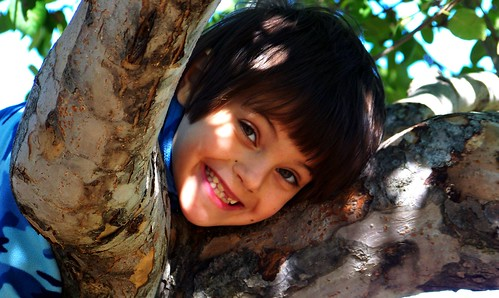 Liam in the apple tree