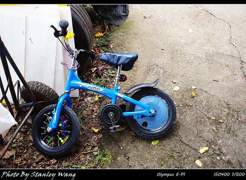 小露營區  Molton單車