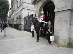 IMG_0370 (kerynzam) Tags: horse near ew stink kez