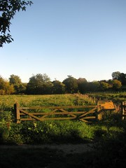 Early Evening Meadows (Dave Roberts3) Tags: autumn trees friends sky fall nature fence landscape gate day meadows reserve clear fields wiltshire potofgold warminster thegalaxy smallbrook pwfall