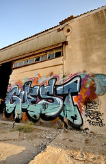 Arad (~GUEST~) Tags: sun hot graffiti paint desert south donkey 420 09 mango guest plums 08 rist 2010 arad bamer guestonine