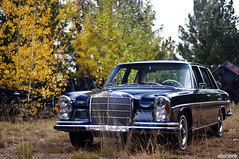W108 (DryHeatPanzer) Tags: arizona sedan mercedes tucson az mount 250 lemmon mtlemmon 250s w108 250se