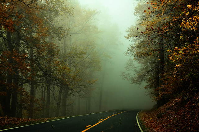 Quiet foggy day on the parkway