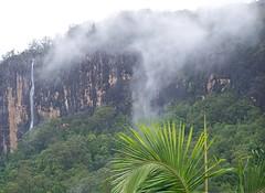 """Wanganui falls"" (YAZMDG (15,000 images)) Tags: australia northernrivers rainbowregion huonbrook wanganuifalls"