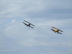 Jungmann Duo (jst @ Tanfield) Tags: trainer warbird airshows biplane propellor luftwaffe airdisplays realaeroplanecompany worldwartwoaviation preservedmilitaryaviation breightonjune2006