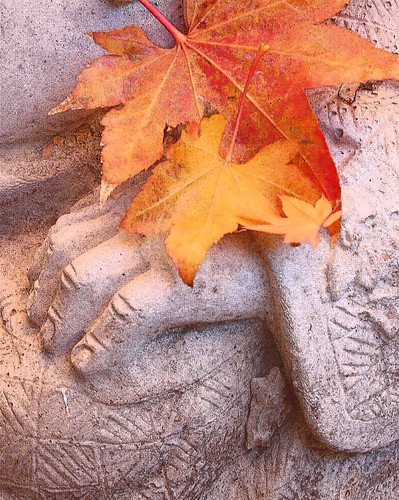 Buddha hand with autumn leaves