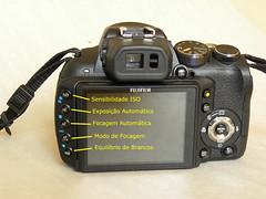 Fotografando Aves - Dica 03 - Configurando a FUJI HS10 (Gustavo Murta) Tags: fuji aves fotografando hs10