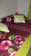 Chambre Fougère - Chambre avec lits jumeaux pour 2 personnes.