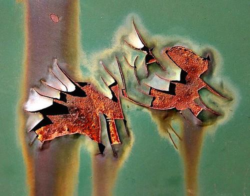 Rusty Petals