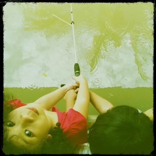 Fish?!