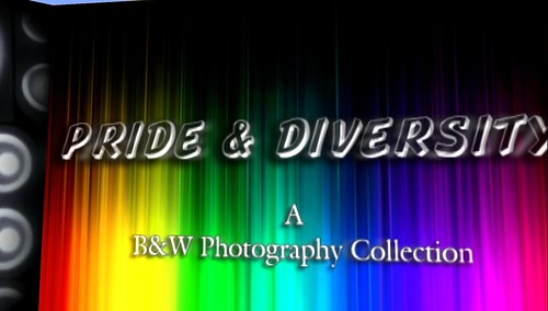 Pride & Diversity : B&W Photo Collection