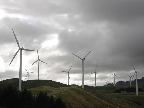 Wind Turbines, Te Apiti