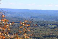 View From Top of Sunrise Mountain (Nicholas Rinaldi) Tags: nature newjersey hiking wildlife nj stokes appalachiantrail sunrisemountain sussexcounty stokesstateforest stokesforest sunrisemt