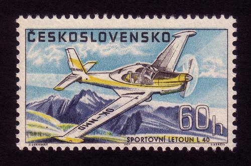 Sports plane L-40